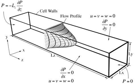 Boundary conditions employed in FE simulations of flow in a microfluidic device