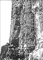 Bubble layers in the Ogi picrite sill, Japan (from Toramaru et al. 1996).