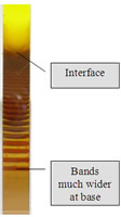 Geometrically spaced layers of precipitate in a system of K2CrO4 in solution above a gel containing AgNO3.