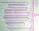 Image of a microfluidic device