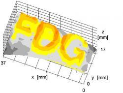 sFDG image