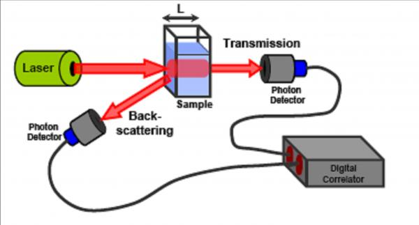 Schematic diagram of diffuse wave spectroscopy apparatus