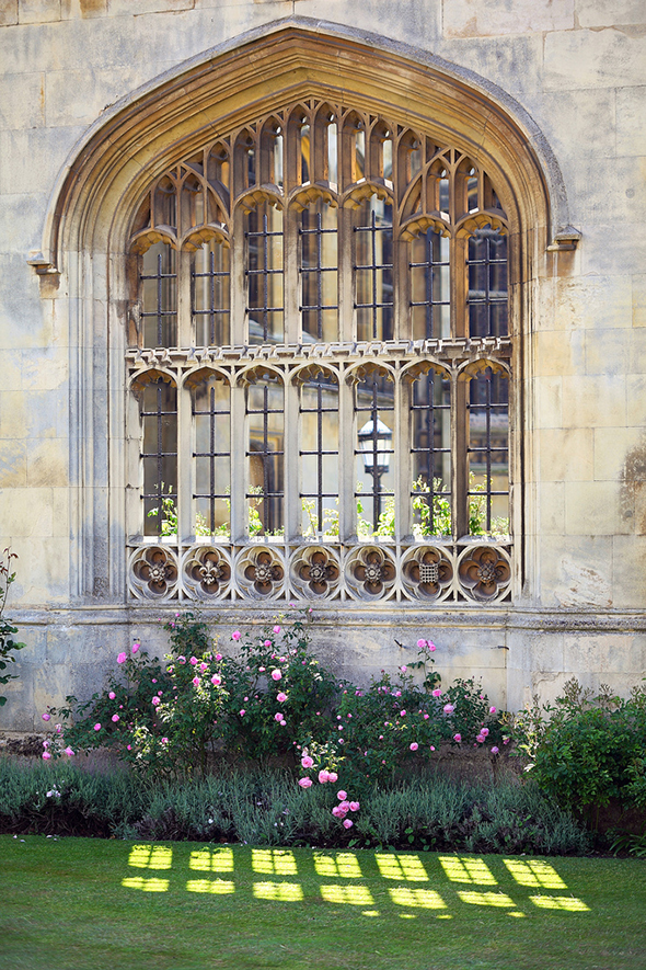 A window of King's College wall with pink flowers in a flowerbed below