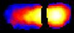 MRI velocity image of immiscible liquid flow