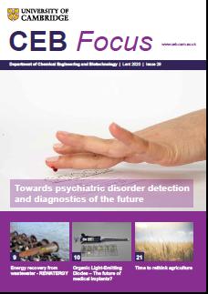 CEB Focus issue 29