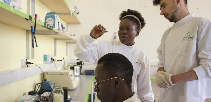 Lenshina Agbor and fellow researchers in the lab in Cameroon